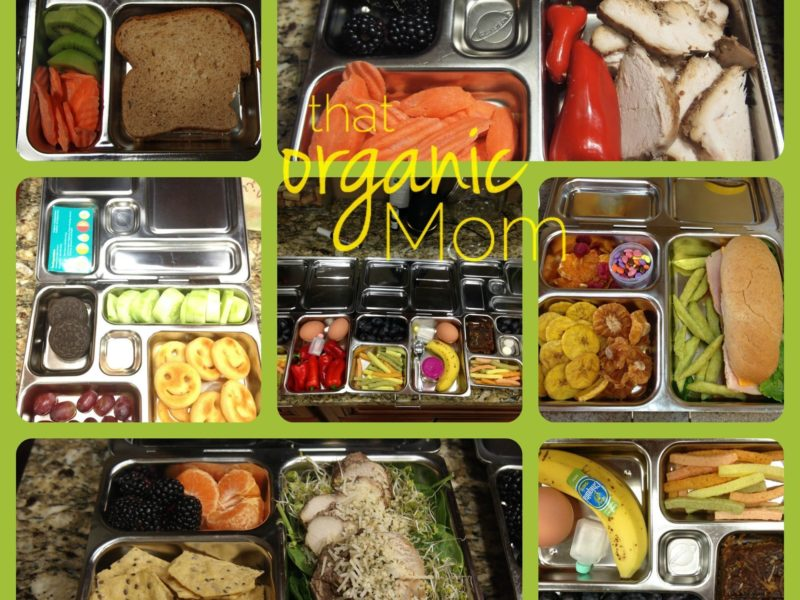 5 Tips to Pack Lunches Picky Kids Will Love