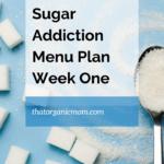 Break the Sugar Addiction Menu Plan 5