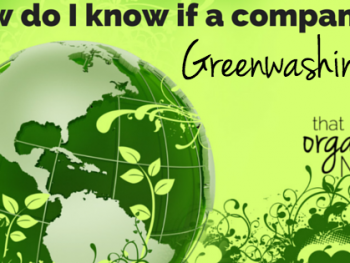 How Do I Know if a Company is Greenwashing? 1
