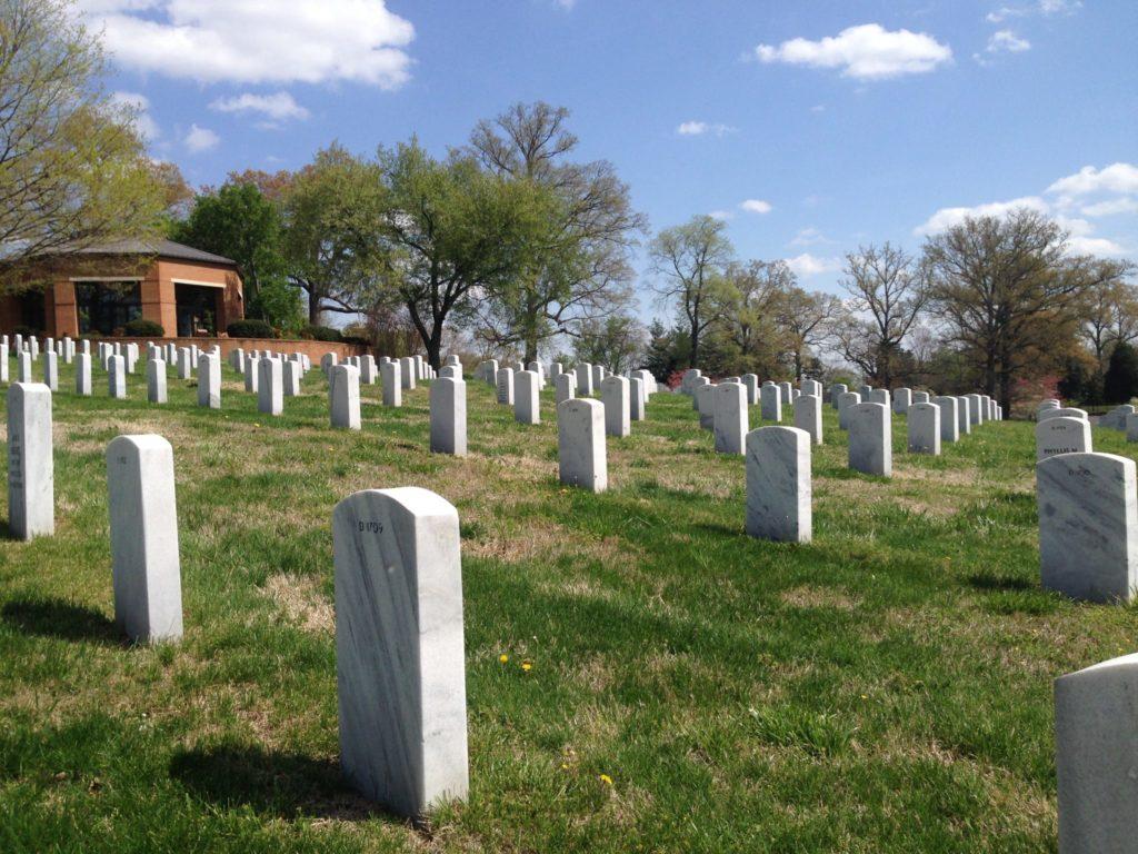 Memorial Day Plans