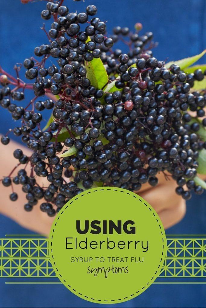 Elderberry PINTEREST graphic