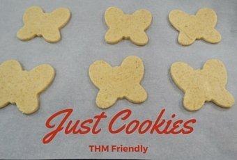 Just Cookies Gluten Free Healthy Recipe 4
