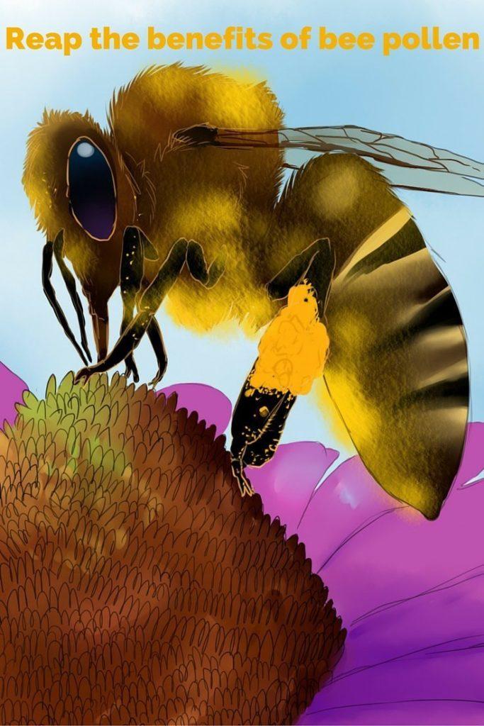 Reap the benefits of bee pollen-2