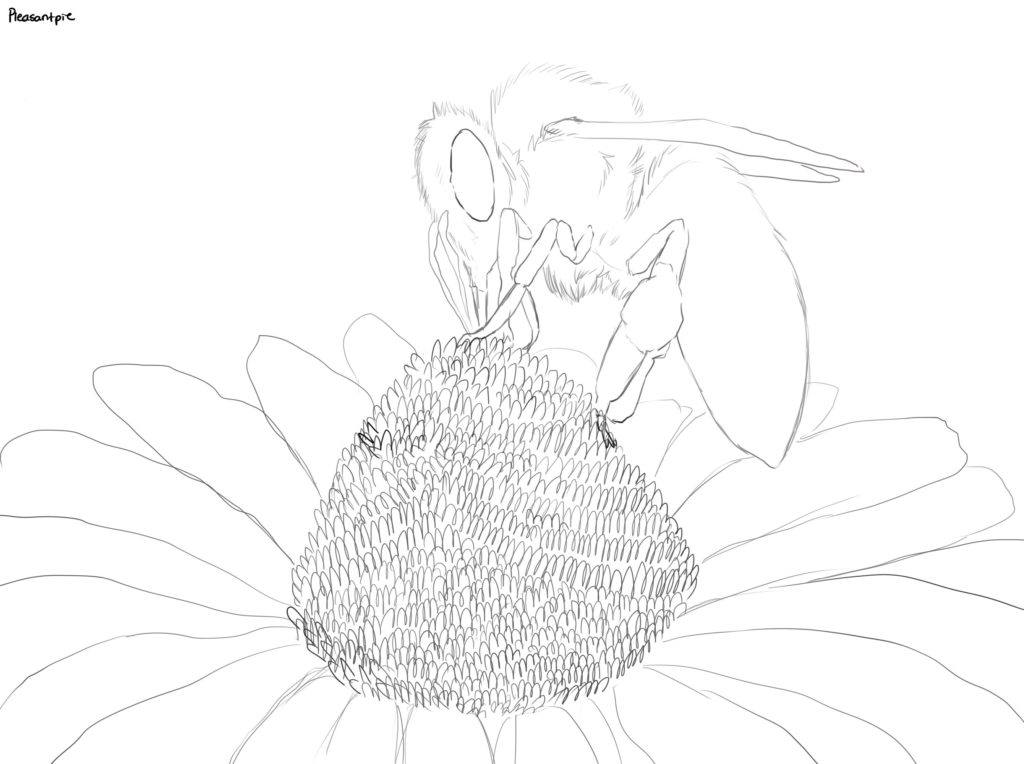 bee eating pollen coloring page