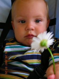 harmons daisy - healthy baby