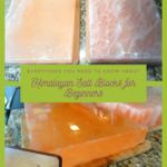 Himalayan Salt Blocks for Beginners 24