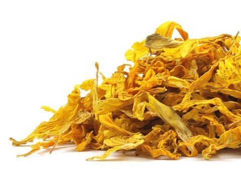 sunflower_petals_21871-product_1x-1438969540
