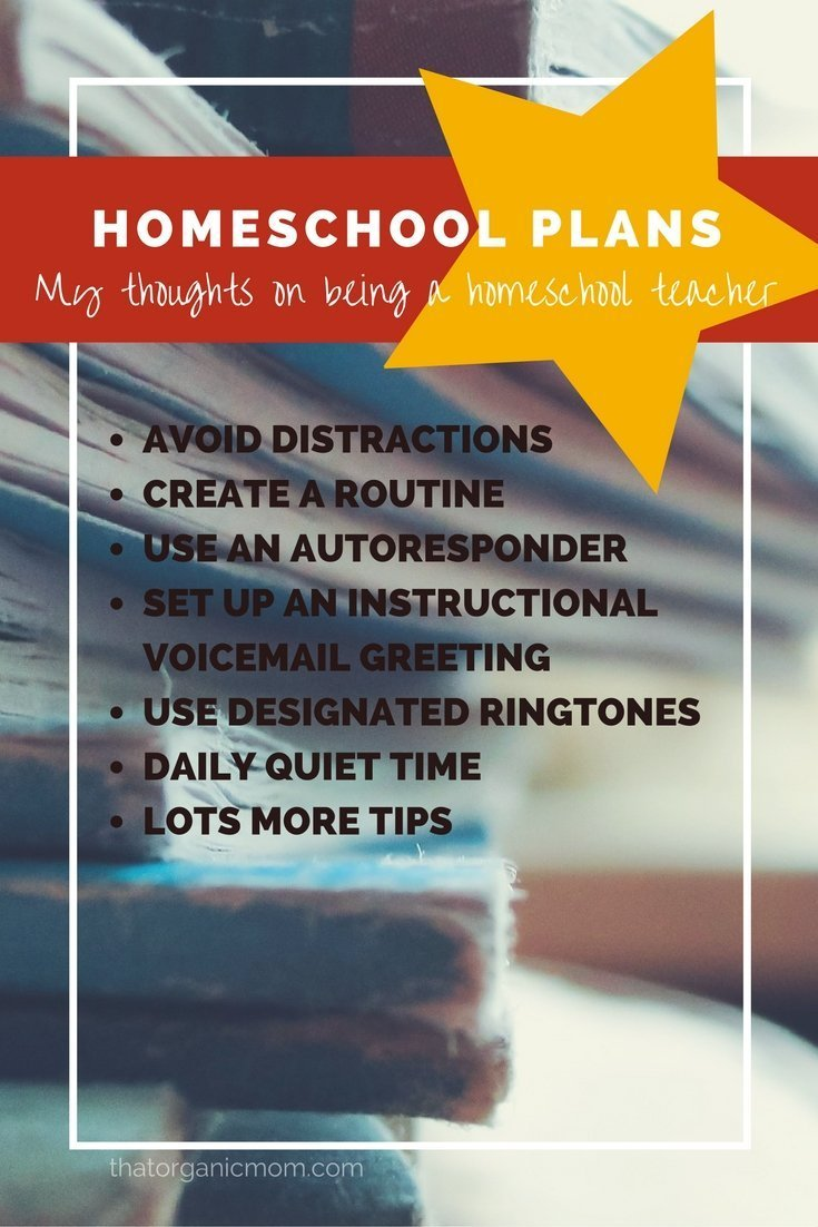 Homeschool Plans and Tips for avoiding distractions