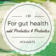 Habit #16 add probiotics and prebiotics for a healthy gut 2