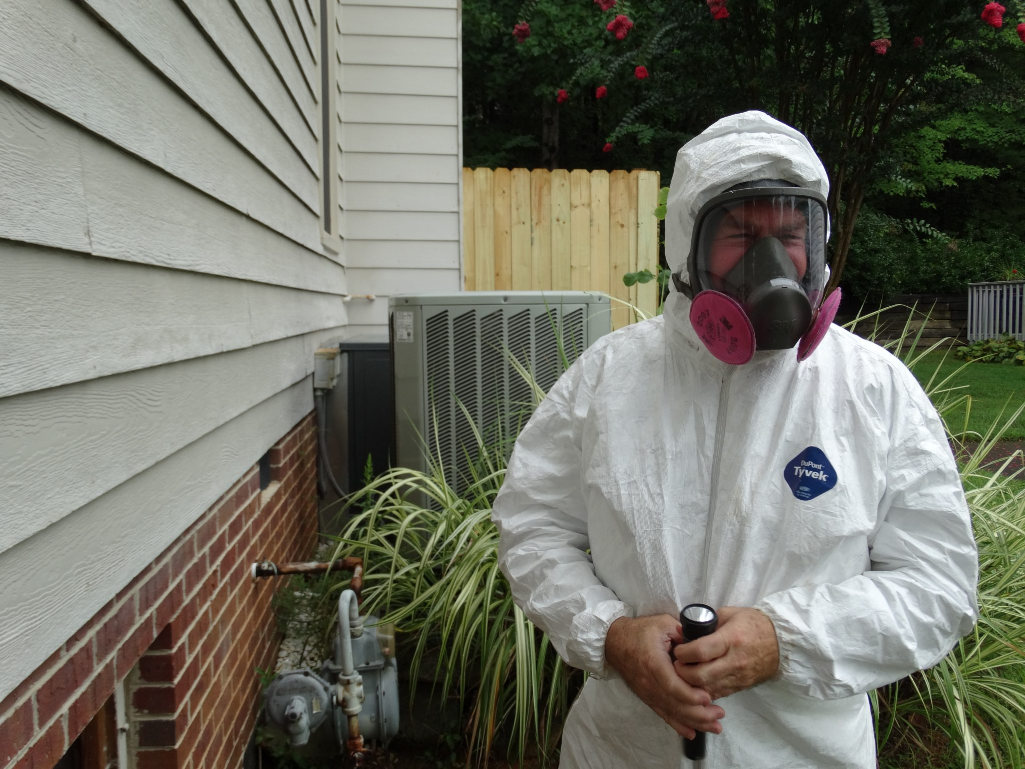 Mold and Lyme Part One 2
