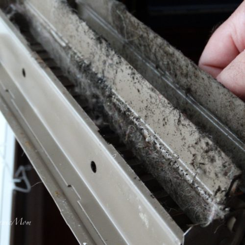 Mold Remediation Steps to remove mold from our home 1