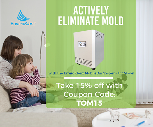 Mold Remediation Steps to remove mold from our home 6