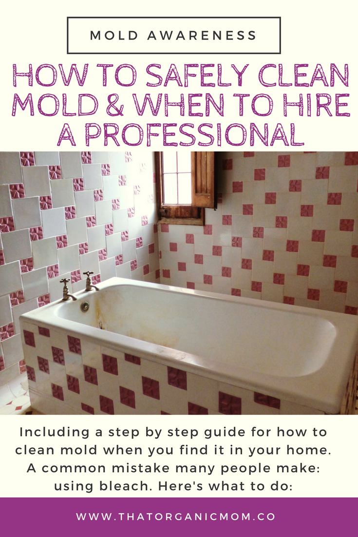 Clean Up Mold Or Hire Help Heres How To Decide What To Do - How to clean up mold in bathroom