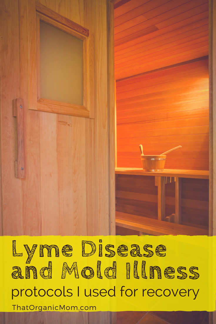 Protocols for treating Lyme Disease and Mold Illness