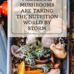 How Medicinal Mushrooms are taking the nutrition world by storm 10