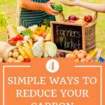 4 Simple Ways to Reduce Your Carbon Footprint 4