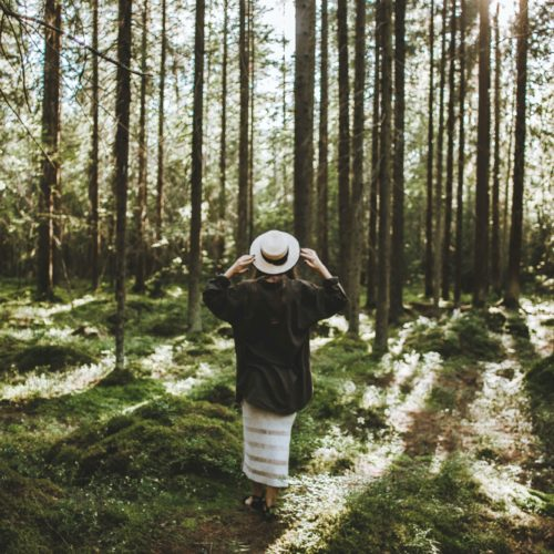 Forest Bathing 6