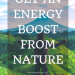 Nature for energy