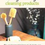 Choosing Eco-Friendly Cleaning Products 1