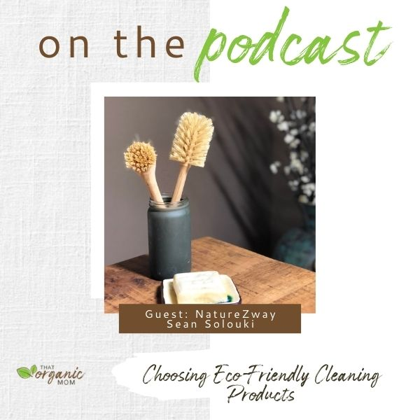 Choosing Eco-Friendly Cleaning Products 2