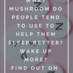 Explore the Power of Mushrooms and Supercharge Your Life 6