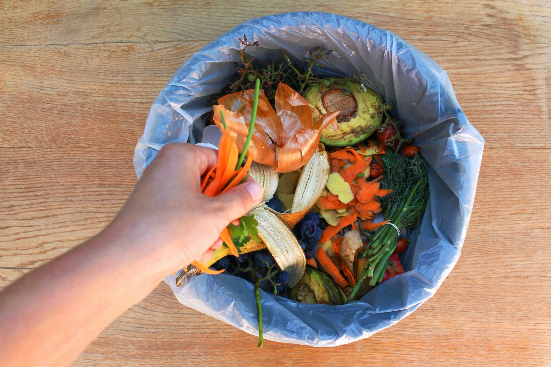 Genius Solution for Those Who Cannot Compost 6