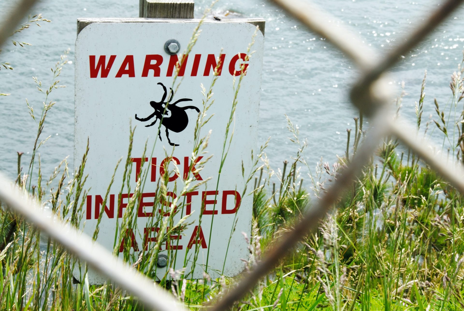 Lyme Disease and Other Tick Borne Illnesses - Q&A with Dr. Sean Beckmann 3