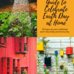 The Ultimate Guide to Celebrate Earth Day at Home 10
