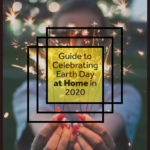 The Ultimate Guide to Celebrate Earth Day at Home 7