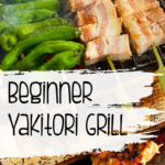 Yakitori Grill at Home for the Beginner 11