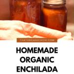 Homemade Organic Enchilada Sauce 3