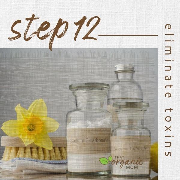 Step 12 - Eliminate Toxins